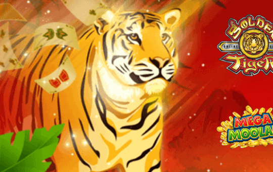 Read an honest review of lucky tiger casino site